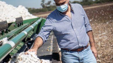 Photo of Capitanich proyectó buenascosechas para el agro