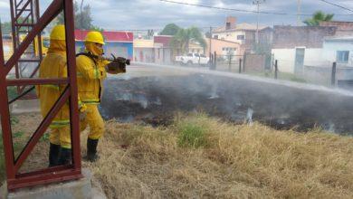 Photo of Castelli: incendiaron un terreno con glifosato