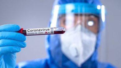 Photo of La provincia registra 1.387 casos de coronavirus y 78 fallecidos