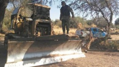 Photo of Descubrieron desmontes  ilegales en Los Frentones