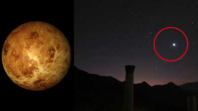 Photo of Fosfina en Venus: posible indicio de vida extraplanetaria