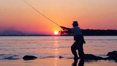 Photo of Se habilitó la pesca deportiva en todo el territorio chaqueño