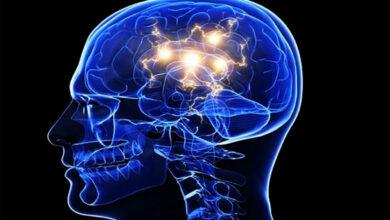 Photo of La dopamina, clave en la motivación