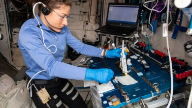 Photo of Con ingenio argentino, la NASA usó la edición genética en la EEI por primera vez