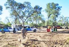 Photo of Multaron a una empresa cordobesa por desmontes en El Impenetrable